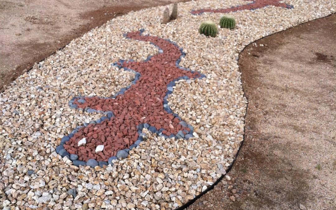 Desert stone geckos