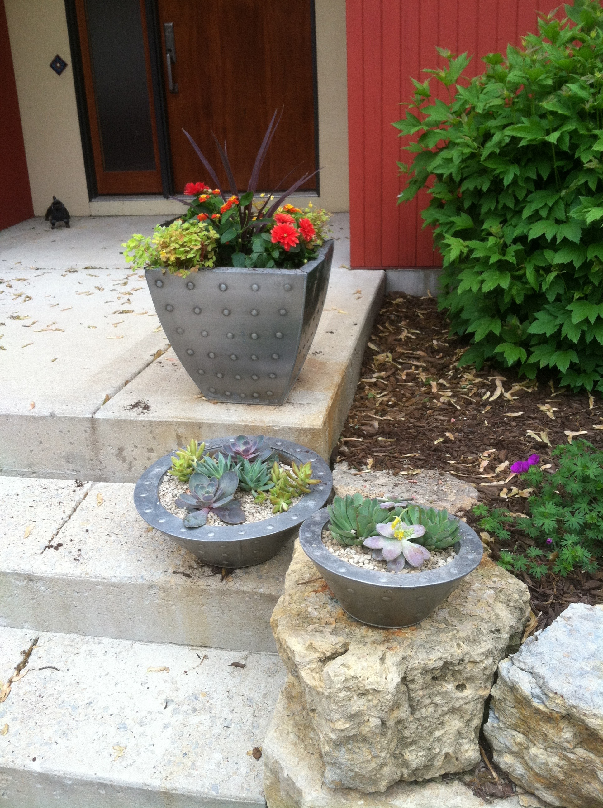 Mix of Succulent troughs and annual containers