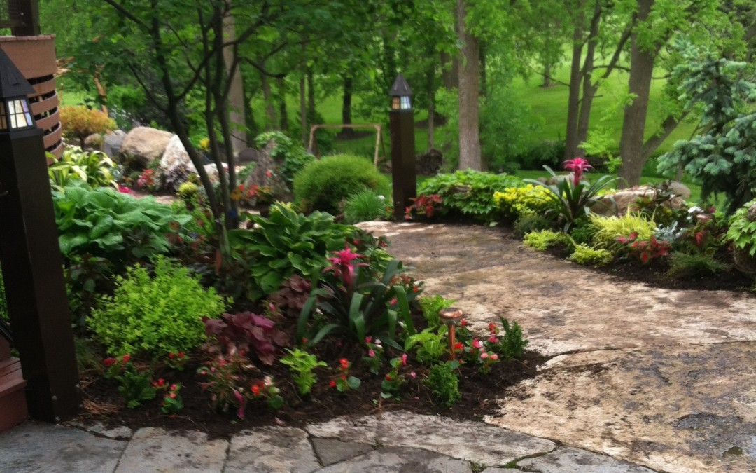 Fully landscaped back yard