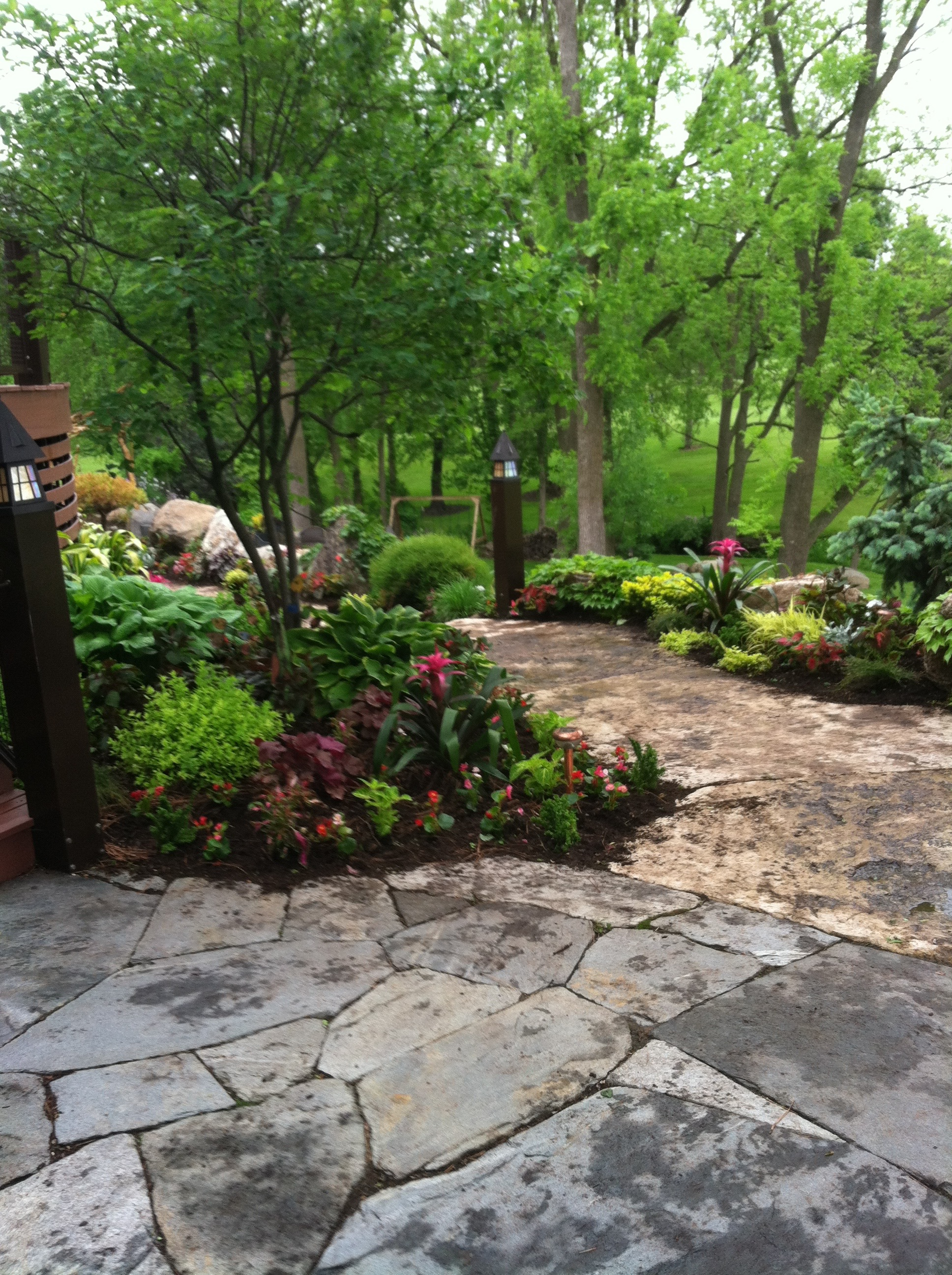 Fully landscaped back yard