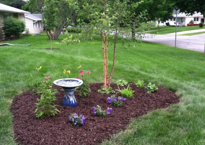 Newly planted garden