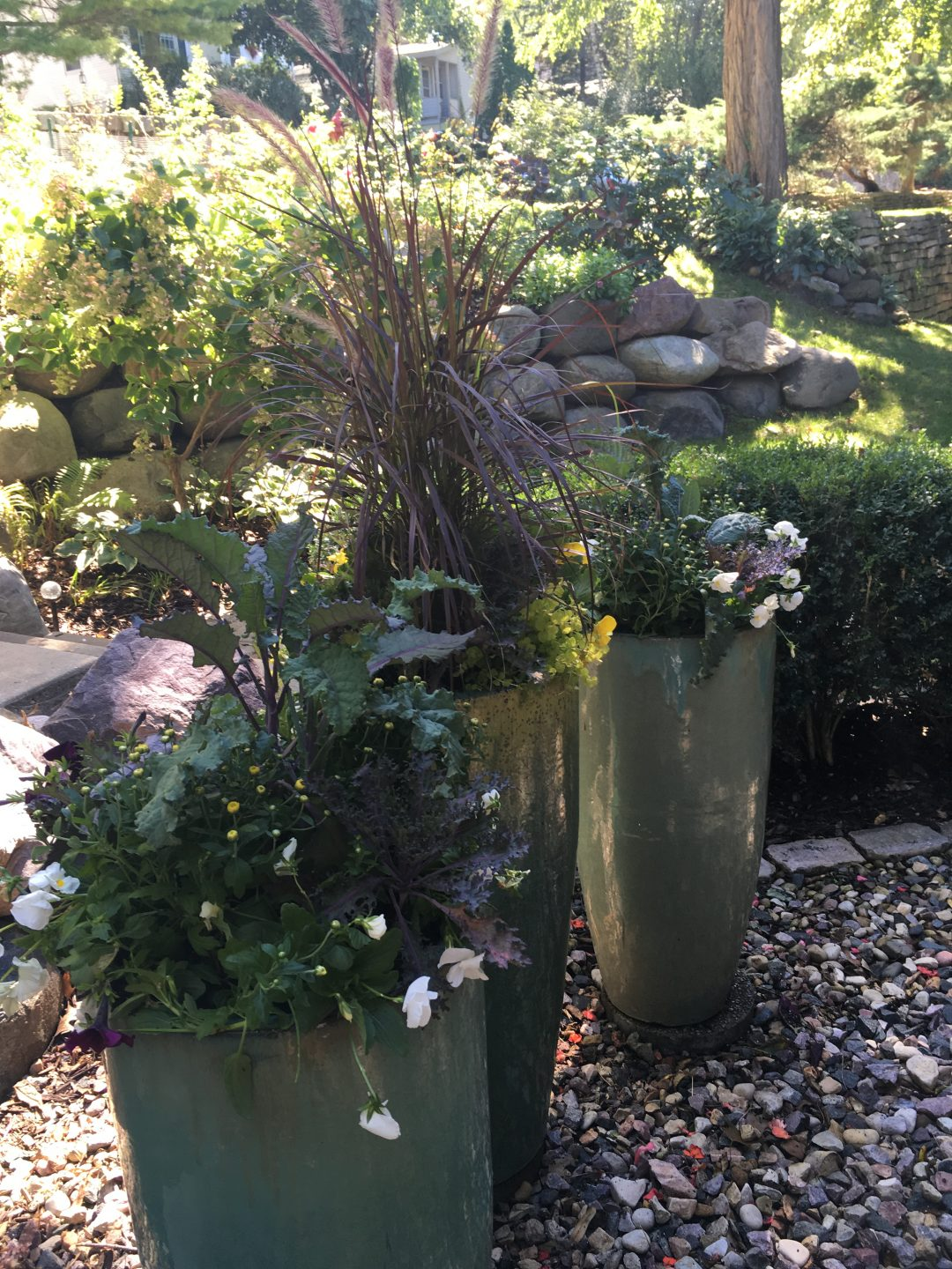 Kale Accenting Fall Containers