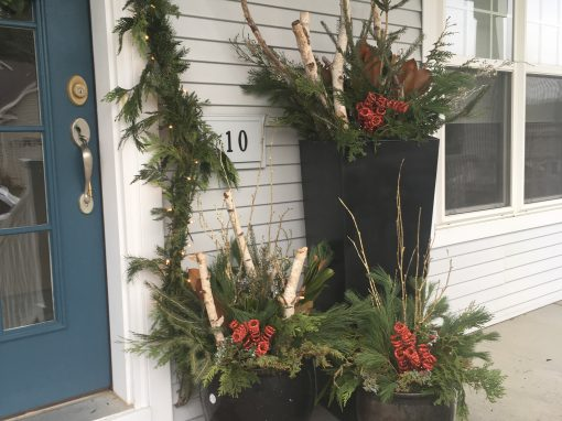Trio of Winter Containers With Birch Accents