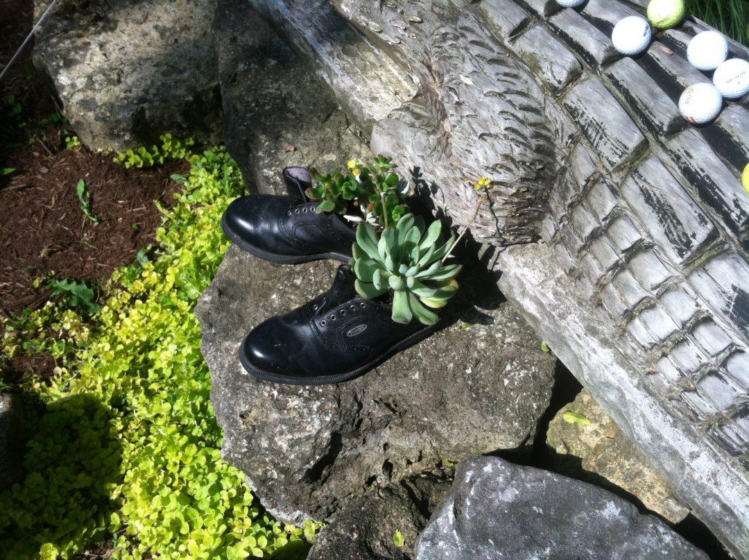 Shoe Shines