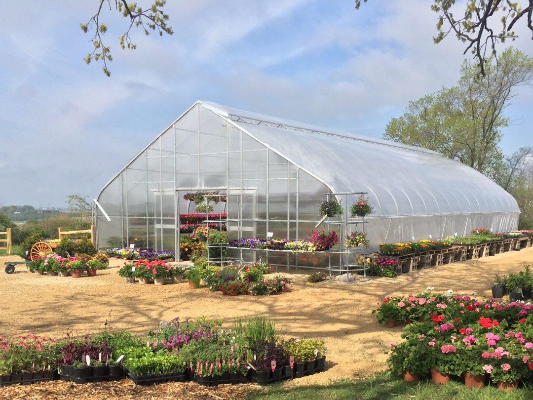 Jada's Garden & Greenhouse