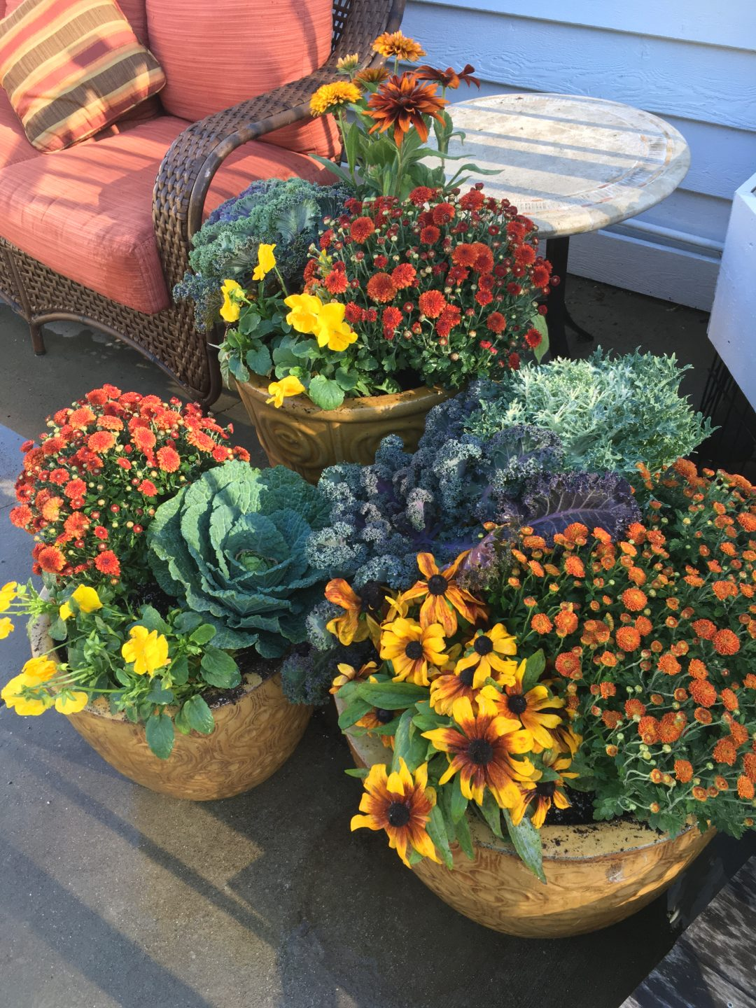 More stunning fall containers!
