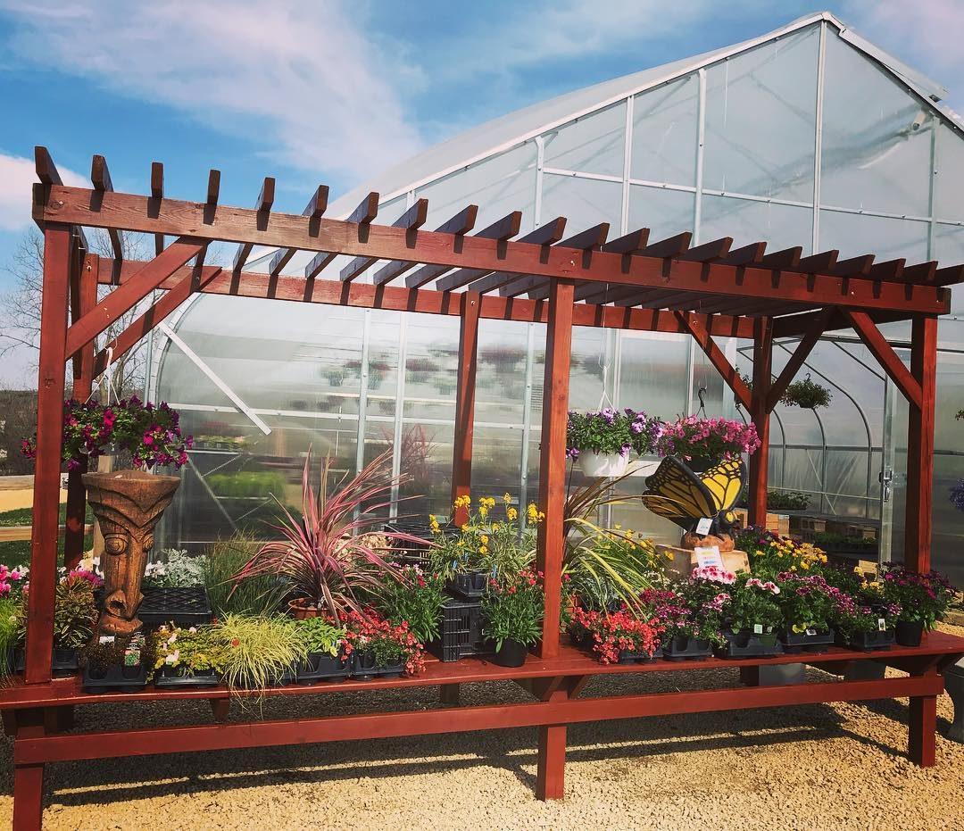Greenhouse Pergola Dispay