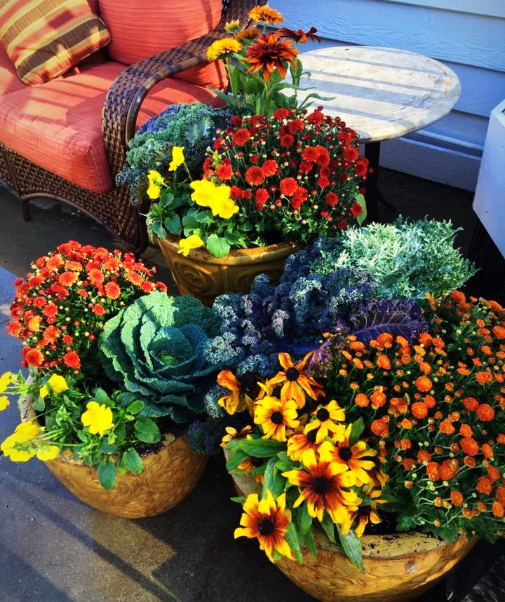Gorgeous Fall Containers