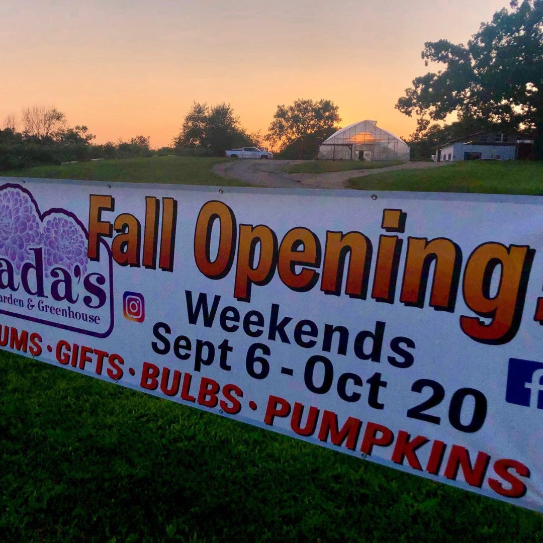 Fall Opening – 2019